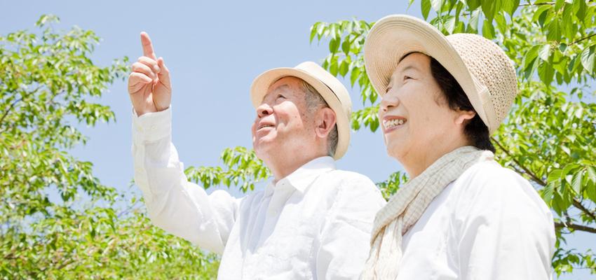 В Японии имеется более 67.000 долгожителей