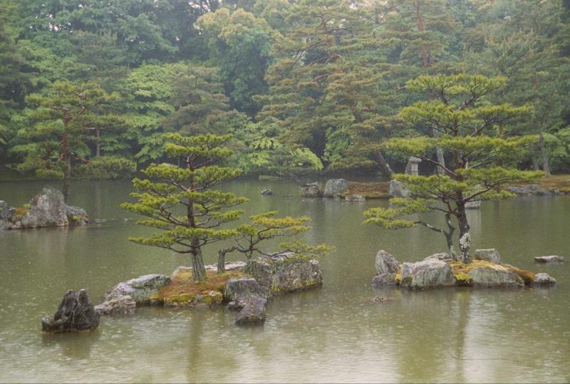 Японские сады – традиции и современные решения
