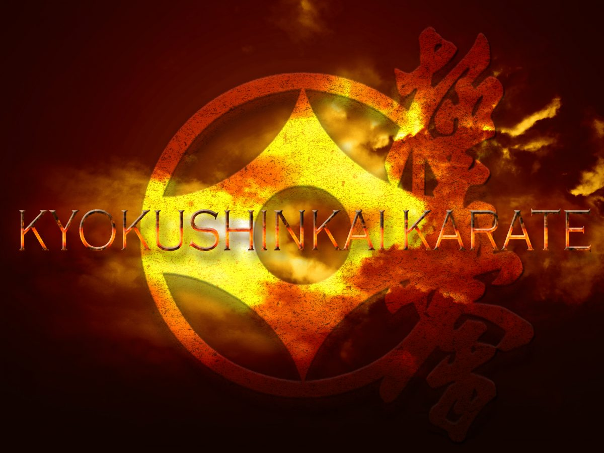 Первенство Приволжского Федерального Округа по карате кёкусинкай для детей и юношества