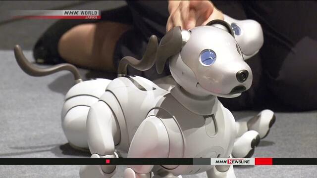 Компания Sony возобновит выпуск собаки-робота AIBO