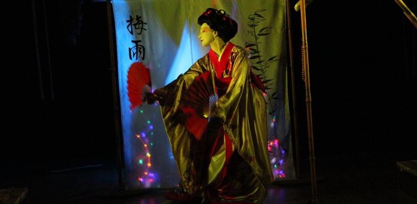 Открываем Японию в «Дневнике гейши»
