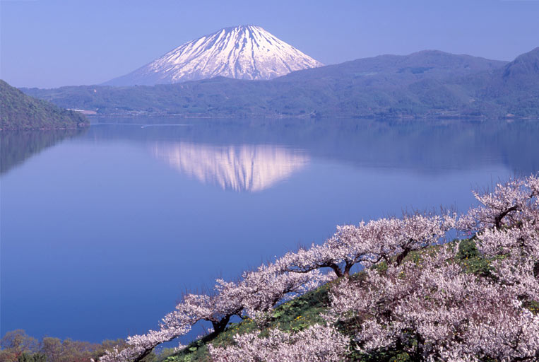 Япония сконцентрирована на скорейшем вступлении в силу соглашения о ТТП без США
