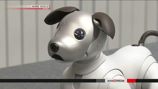 Компания Sony предлагает новую модель знаменитого робота-собачки