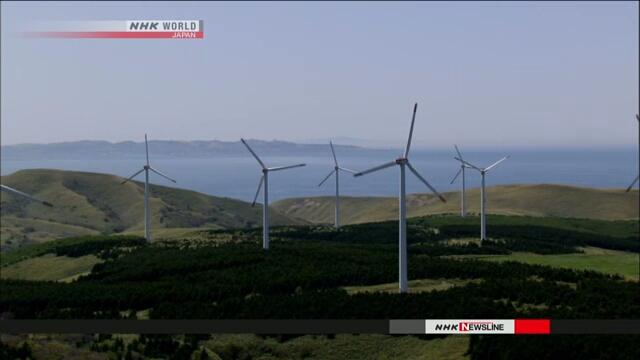 Комиссия экспертов призвала правительство Японии сосредоточить внимание на возобновляемой энергии