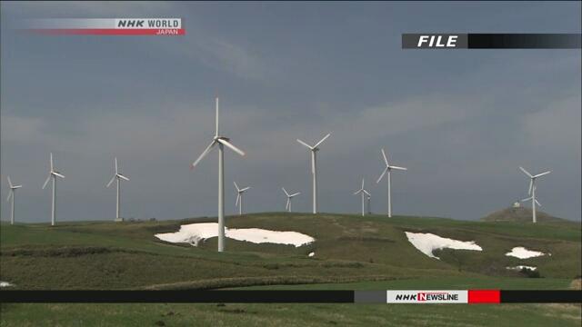 Вскоре в Японии откроется новый рынок в целях использования возобновляемых источников энергии