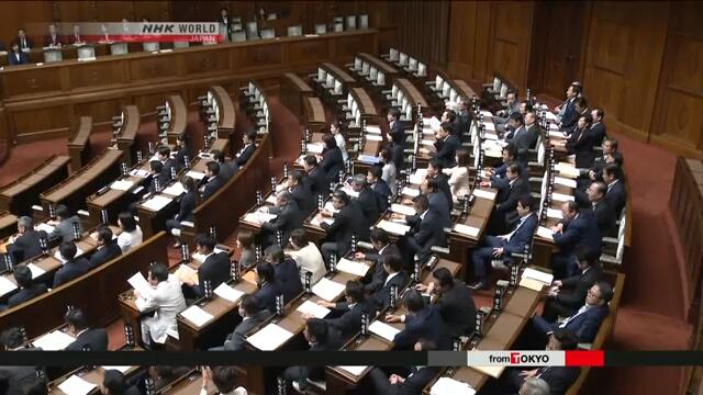 В Японии принят закон о гендерном равенстве в политике