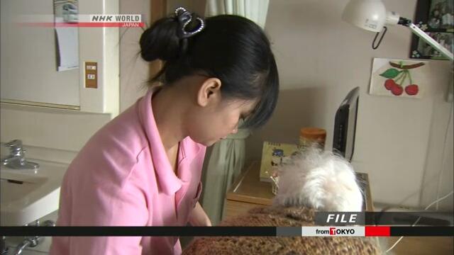 Правительство Японии продлит срок виз для иностранных стажеров