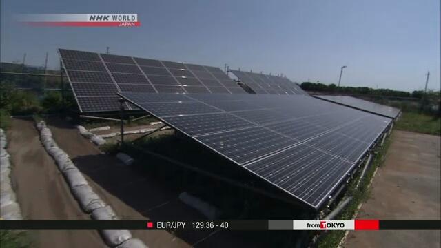 Правительство Японии призывает компании страны активнее инвестировать в возобновляемые источники энергии