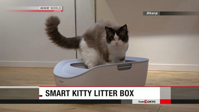 Компания Sharp разработала умный туалет для кошек