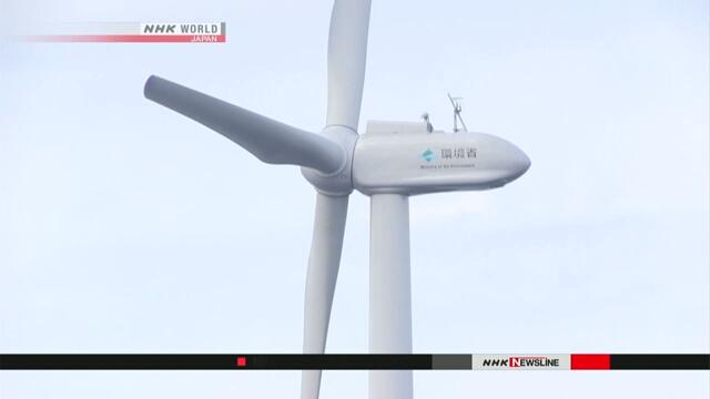Парламент Японии принял закон по выработке электроэнергии с помощью морского ветра