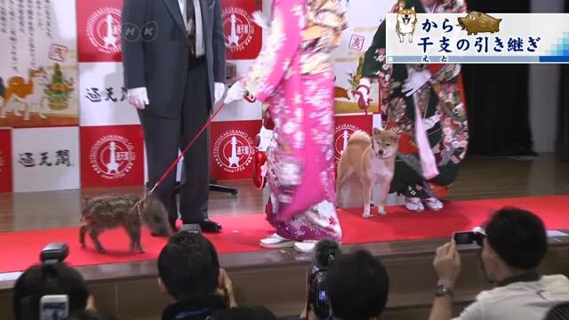 На церемонии в Осаке символ уходящего года передал свои обязанности символу следующего года