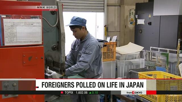Будет проведено исследование среди проживающих в Японии иностранцев
