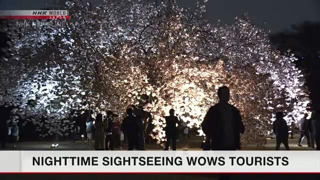 Парк Синдзюку гёэн в Токио привлекает гостей страны вечерними часами посещения