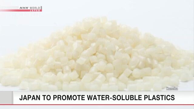 Япония окажет поддержку распространению пластика, разлагаемого океаном