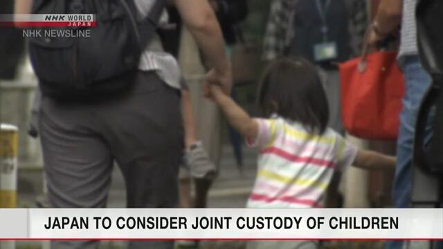 В Японии планируется изучить возможность совместной опеки детей после развода родителей