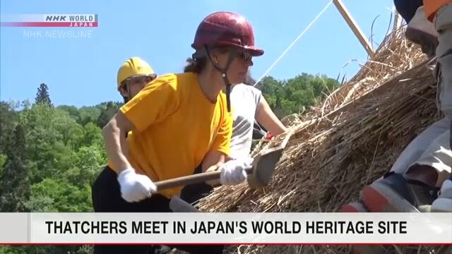 В японской деревне Сиракава кровельщики из разных стран приняли участие в покрытии соломой крыши традиционного фермерского дома