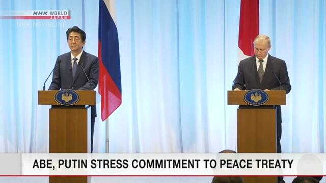 Абэ и Путин подчеркнули желание заключить мирный договор между Японией и Россией