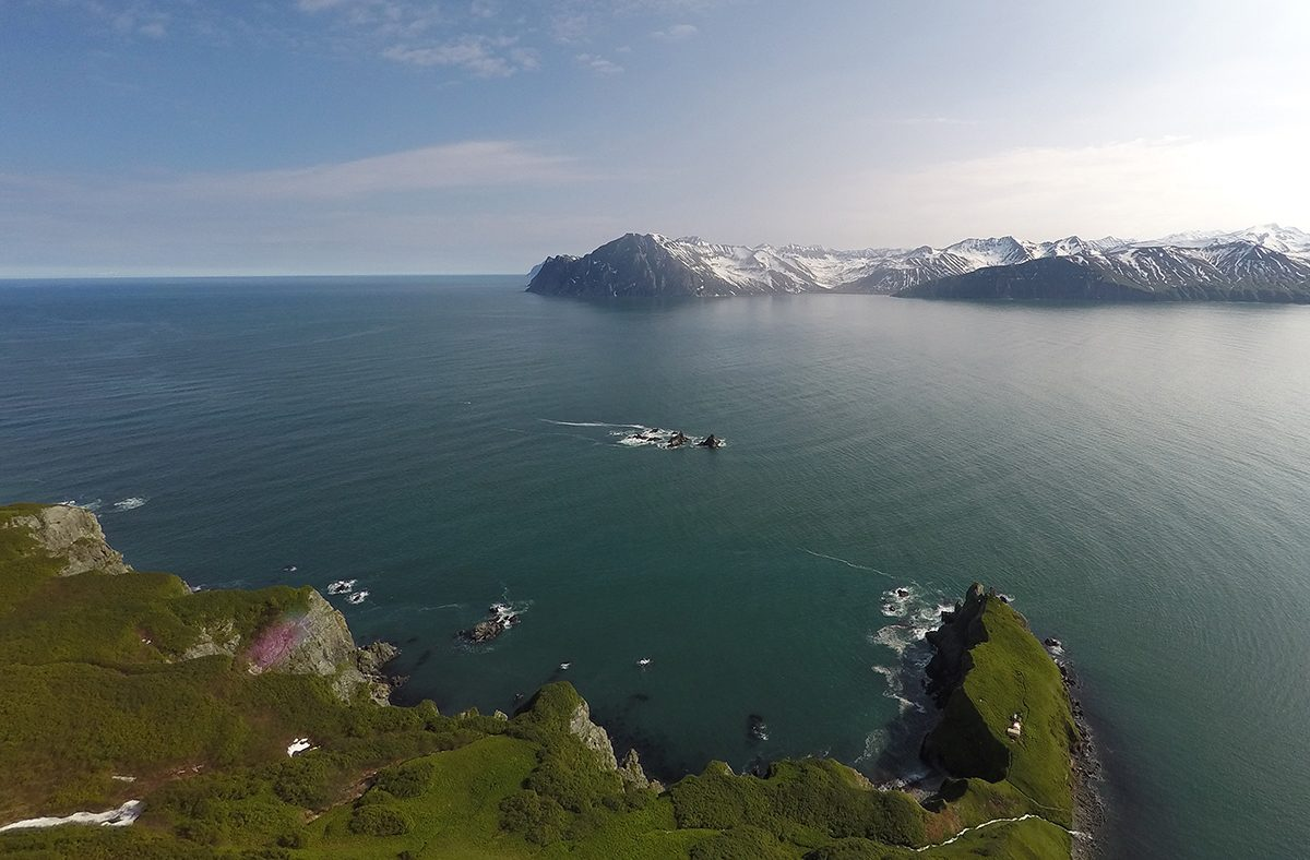 Пловцы-экстремалы из разных стран добрались с Сахалина до Хоккайдо через пролив Лаперуза