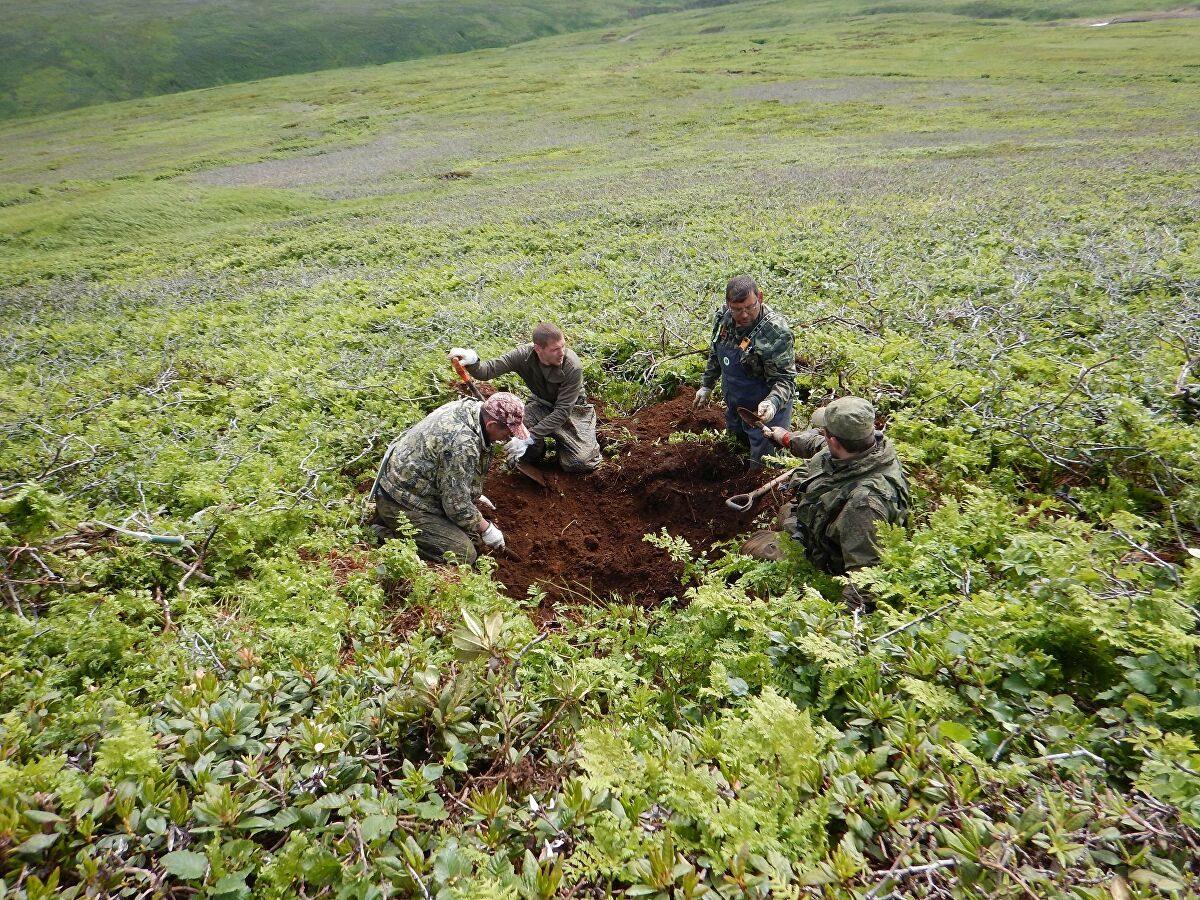 Поисковики нашли на острове Шумшу останки советских и японских солдат
