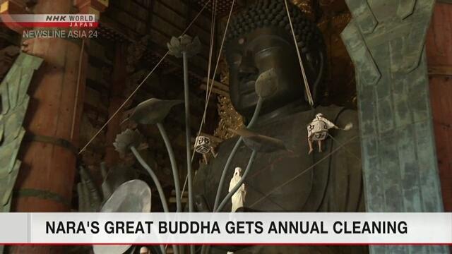 Статую Большого Будды в городе Нара почистили перед ежегодным фестивалем