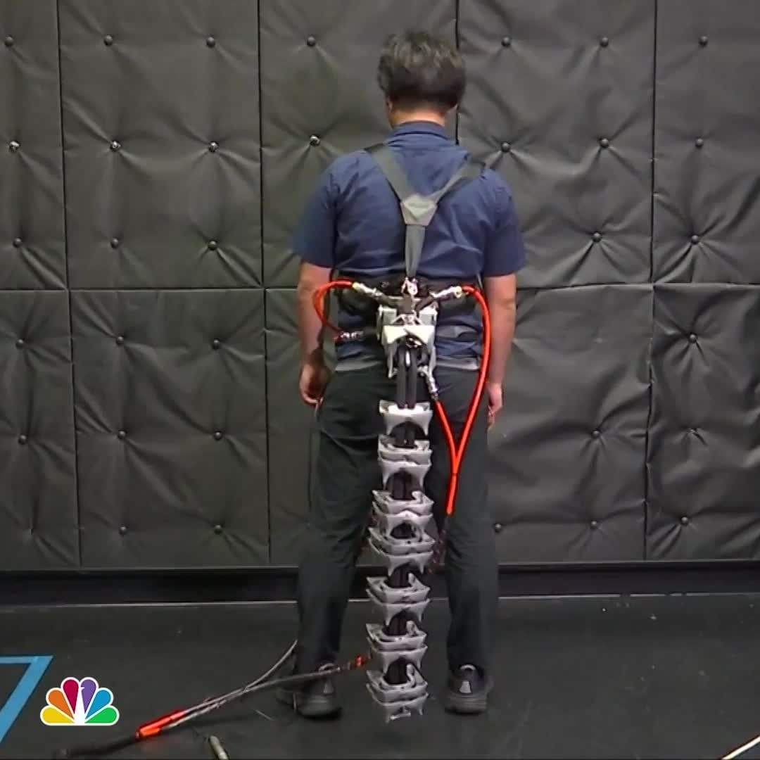 СМИ: в Японии создали прототип механического «хвоста» для пожилых людей