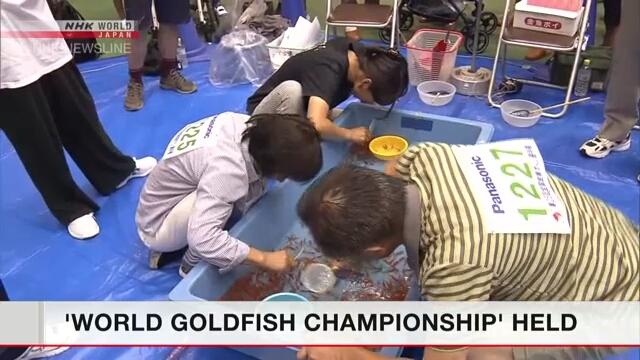 В префектуре Нара состоялось состязание по лову золотых рыбок
