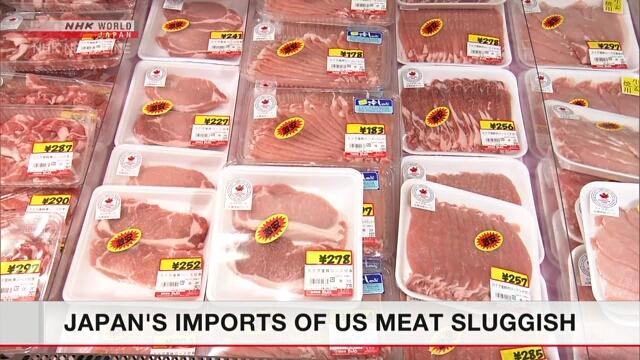 Статистика свидетельствует о сокращении японского импорта мясной продукции из США