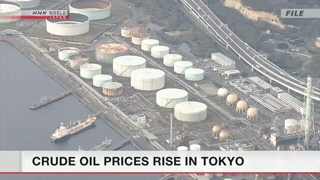 Стоимость фьючерсов на сырую нефть в Токио поднялась более чем на 12%