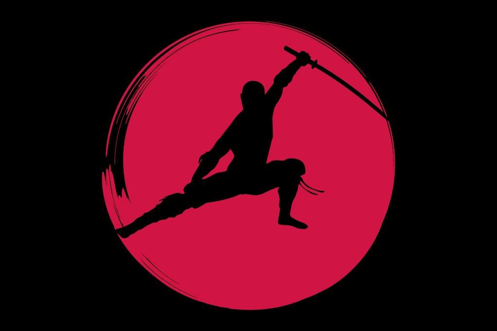 «История ниндзя» (Япония)
