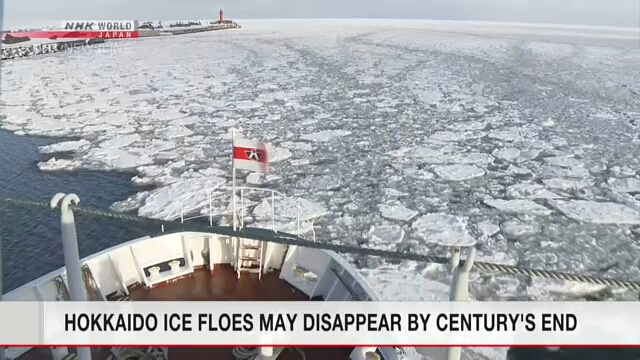 Дрейфовый лед на Хоккайдо может исчезнуть к концу века