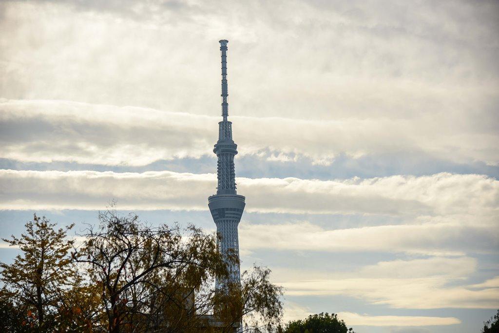 Письма с Мукодзимы-2. Хокусай и 36 видов Sky Tree