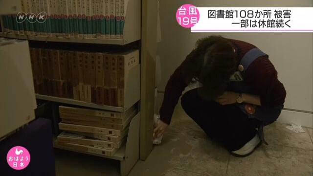 От тайфуна №19 в Японии пострадало более ста общественных библиотек