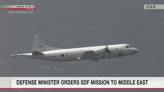 Министр обороны Японии отдал приказ о направлении двух самолетов и эсминца на Ближний Восток