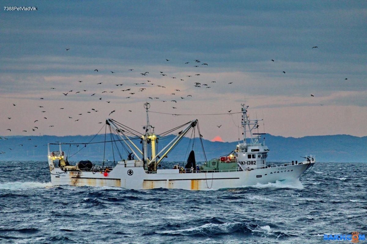 СМИ: японские рыбаки возобновили промысел в водах южных Курил