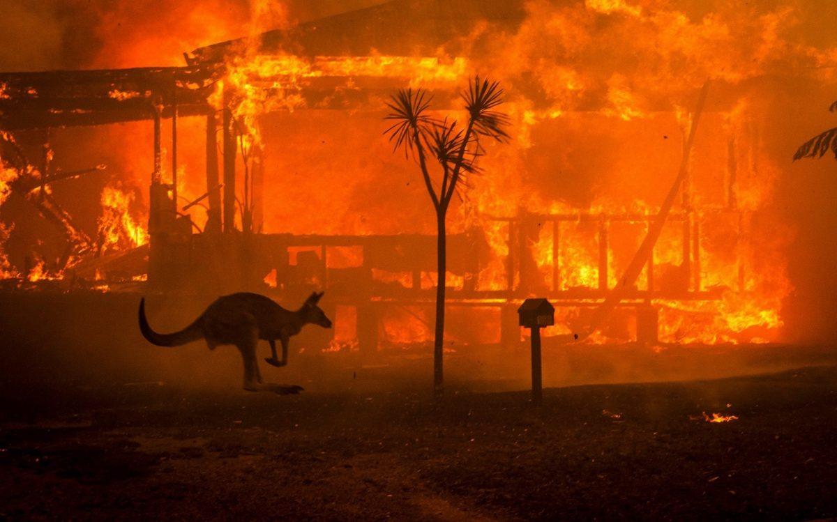 Япония направила отряд Сил самообороны в Австралию для борьбы с лесными пожарами