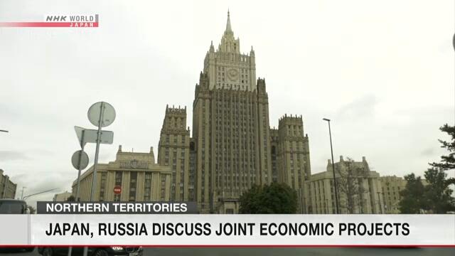 Рабочая группа экспертов из Японии и России обсудила совместные экономические проекты