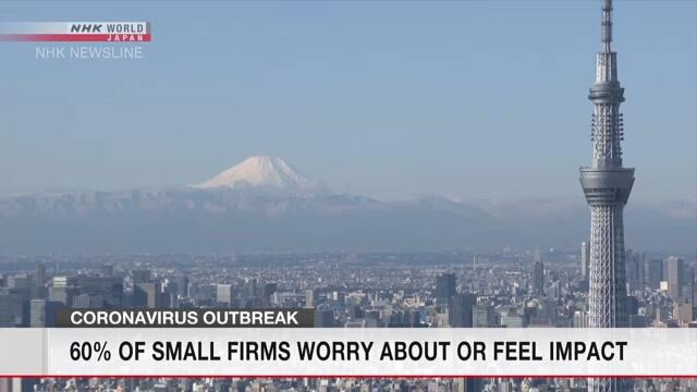 Малые и средние предприятия в Японии обеспокоены последствиями коронавируса